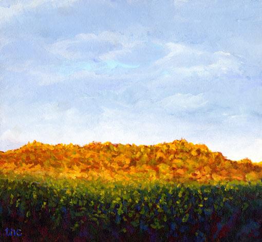 "Lightly Descending • Framed 16x15"" • Original Acrylic Painting on Canvas"