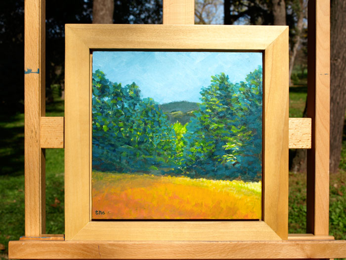 "Meadow Pass - 12x12"" Acrylic Painting Framed"