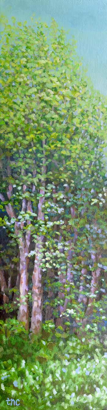 "Trees if you Please - 6 1/2""x24"" Acrylic Gallery Wrapped Canvas"