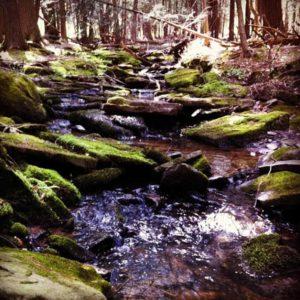 bubbling-trail-inspiration