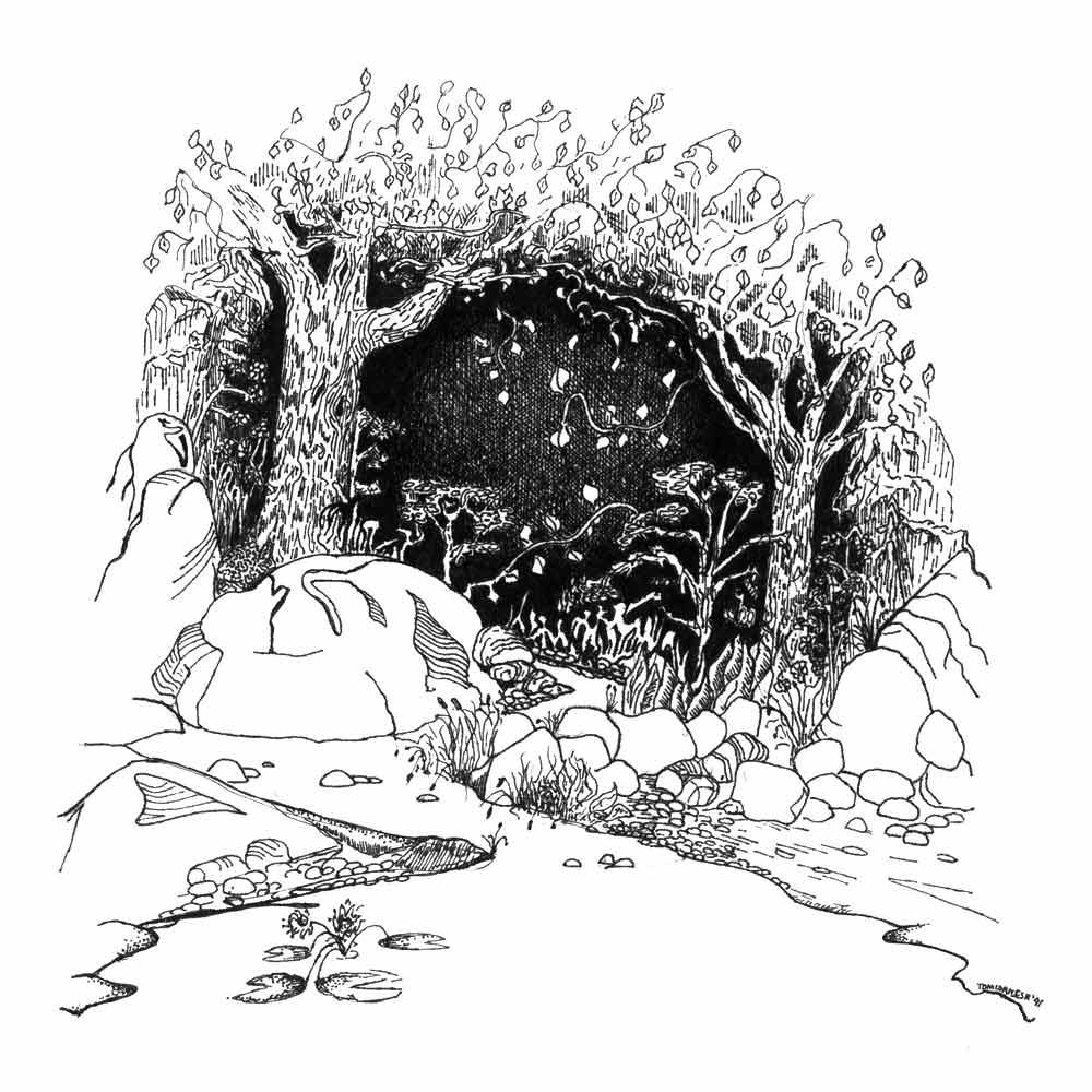 Looking Inward   Original Pen Drawing by Tom Cornish