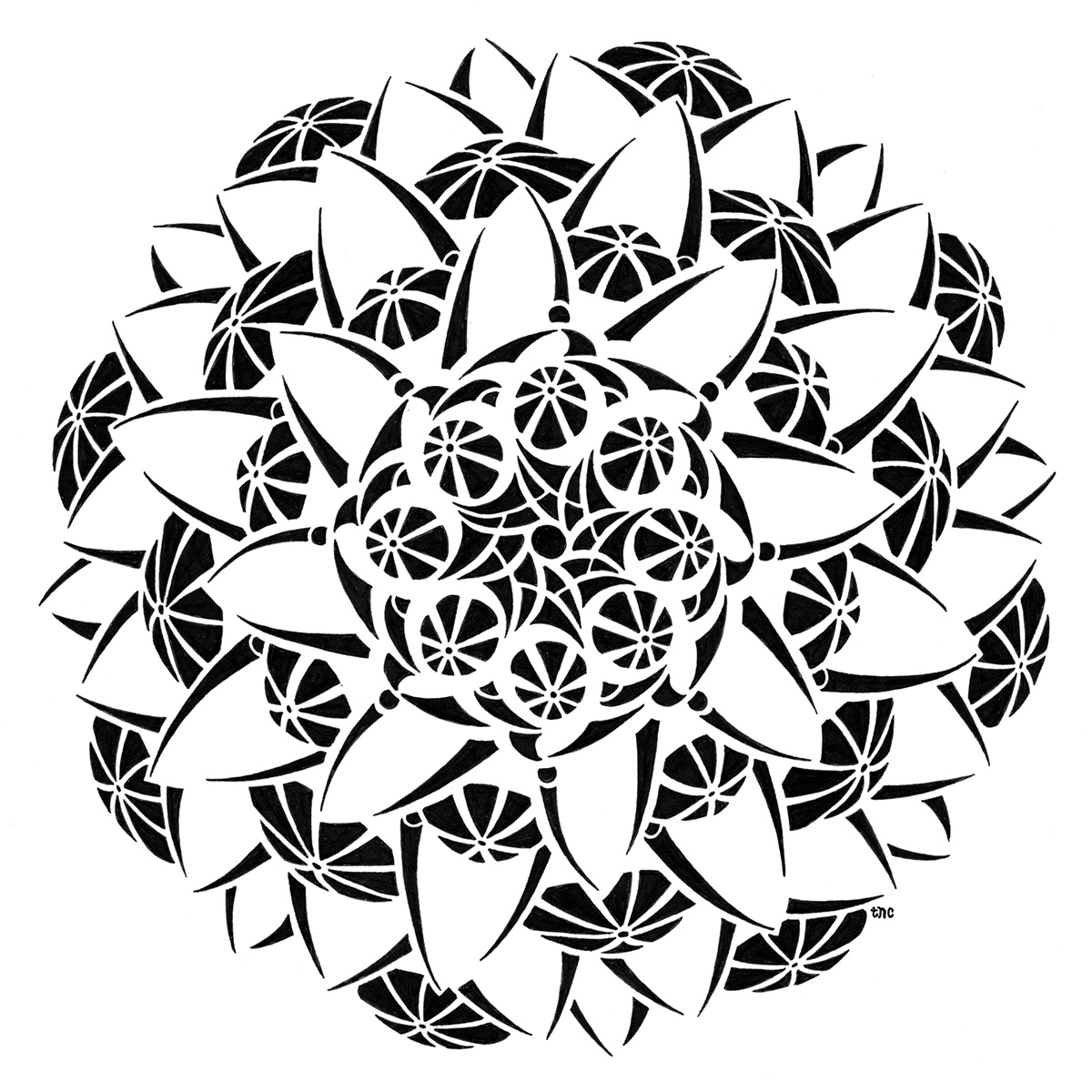 Blooming - Print