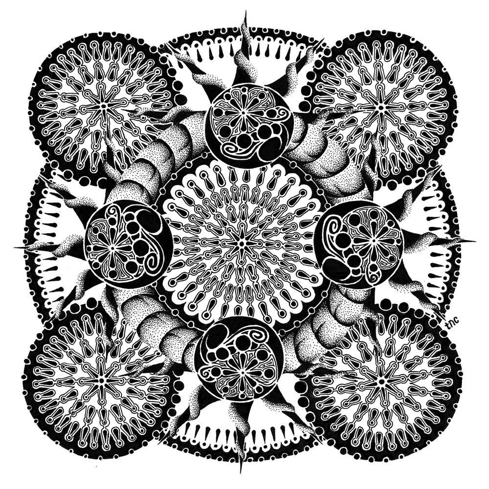 Compass - Print